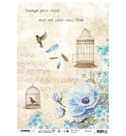Uncage your mind and set your soul free rp09