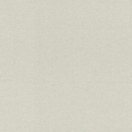 WARM STRUCTUUR BEHANG - Rasch Textil ABACA 229263