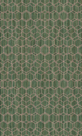 GROEN HEXAGON BEHANG - BN Wallcoverings Dimensions 219621