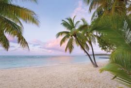 PARADISE MORNING FOTOBEHANG - Komar XXL4-528