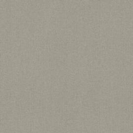 WARM STRUCTUUR BEHANG - Rasch Textil ABACA 229195
