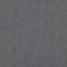 GRIJS GLITTER BEHANG - Dutch Chroma 04-Charcoal