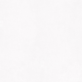 LEDERLOOK BEHANG - Noordwand Natural FX G67470