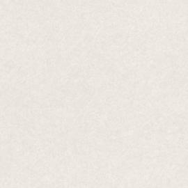 CREME GLITTER BEHANG - Rasch Textil ABACA 229454