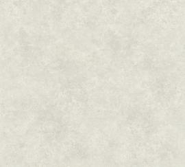 GEMELEERD GRIJS BEHANG - AS Creation Asian Fusion 37467-6