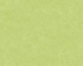 GROEN BEHANG - AS Creation Neue Bude 2.0 362067