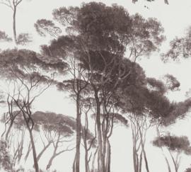BRUINE PIJNBOMEN BEHANG - AS Creation History of Art 37651-1
