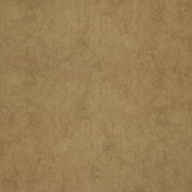 CARAMEL GLITTER BEHANG - Dutch Chroma 35-Caramel