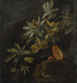 PASSION FLOWERS 8007 FOTOBEHANG - Dutch Painted Memories