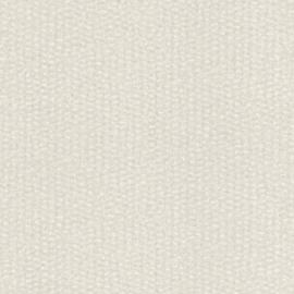 MODERN CREME ZILVER BEHANG - Rasch Textil ABACA 229317