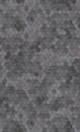 DONKER GRIJS HEXAGON BEHANG - BN Wallcoverings Dimensions 219581