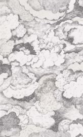 WOLKEN BEHANG - BN Wallcoverings #Smalltalk 219263