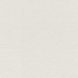 LICHT GRIJS STRUCTUUR BEHANG - Rasch Textil ABACA 229256