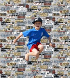 KENTEKENPLATEN BEHANG - KidsWalls Thomas TH27117