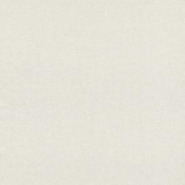 FIJNE ZILVEREN STREEPJES BEHANG - Rasch Textil ABACA 229423