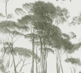 GROENE PIJNBOMEN BEHANG - AS Creation History of Art 37651-2