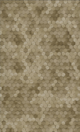 BRONS HEXAGON BEHANG - BN Wallcoverings Dimensions 219587