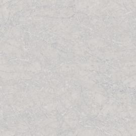 GRIJS/ZILVER GEMELEERD METALLIC BEHANG - Casadeco Oxyde 29129140