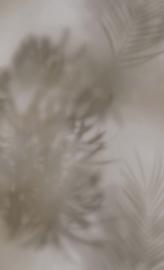 GRIJS GROENE TROPISCHE BLADEREN BEHANG - BN Wallcoverings Dimensions 219547