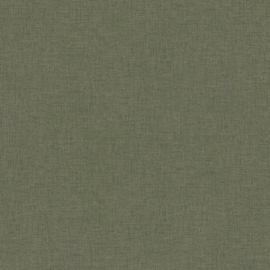 "UNI GROEN BEHANG- AS Creation New Walls ""Livingwalls"" 37431-2"