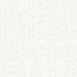 GRIJS/WIT BEHANG - AS Creation 95328-2 ✿✿✿