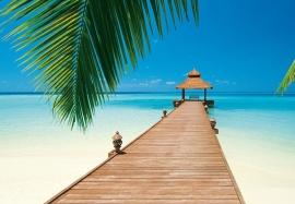 Fotobehang 00284 Paradise Beach