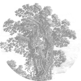 """Behangcirkel Engraved Tree """"kunstenaar onbekend"""" - KEK Amsterdam Wonderwalls CK-013"""