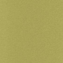 GROEN LINNENLOOK BEHANG - Caselio Linen 68527355