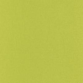APPELTJES GROEN LINNENLOOK BEHANG - Caselio Linen 68527483