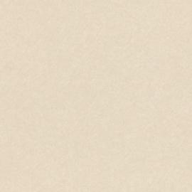 FIJNE ZILVEREN STREEPJES BEHANG - Rasch Textil ABACA 229416