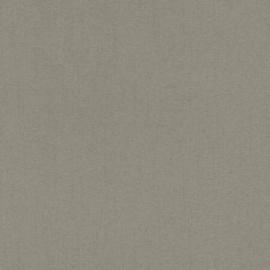 FIJNE ZILVEREN STREEPJES BEHANG - Rasch Textil ABACA 229430