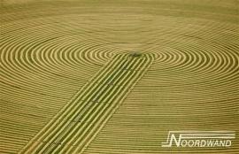 GRANENVELD FOTOBEHANG - Noordwand Farm Life 3750015