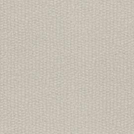 MODERN CREME ZILVER BEHANG - Rasch Textil ABACA 229324