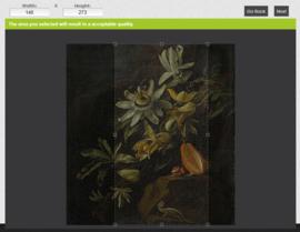 PASSION FLOWERS 8007 FOTOBEHANG - Dutch Painted Memories (aangepaste maat)