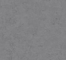 DONKER GRIJS BETONLOOK BEHANG - AS Creation Metropolitan Stories 369115