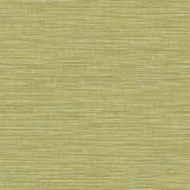 GROEN RAFFIA STREEP BEHANG - Caselio WARA 69587124