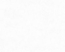 LICHT GRIJS BEHANG - AS Creation Neue Bude 2.0 362066