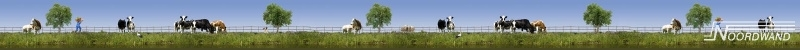 KOEIEN IN DE WEI BEHANGRAND - Noordwand Farm Life 3750039