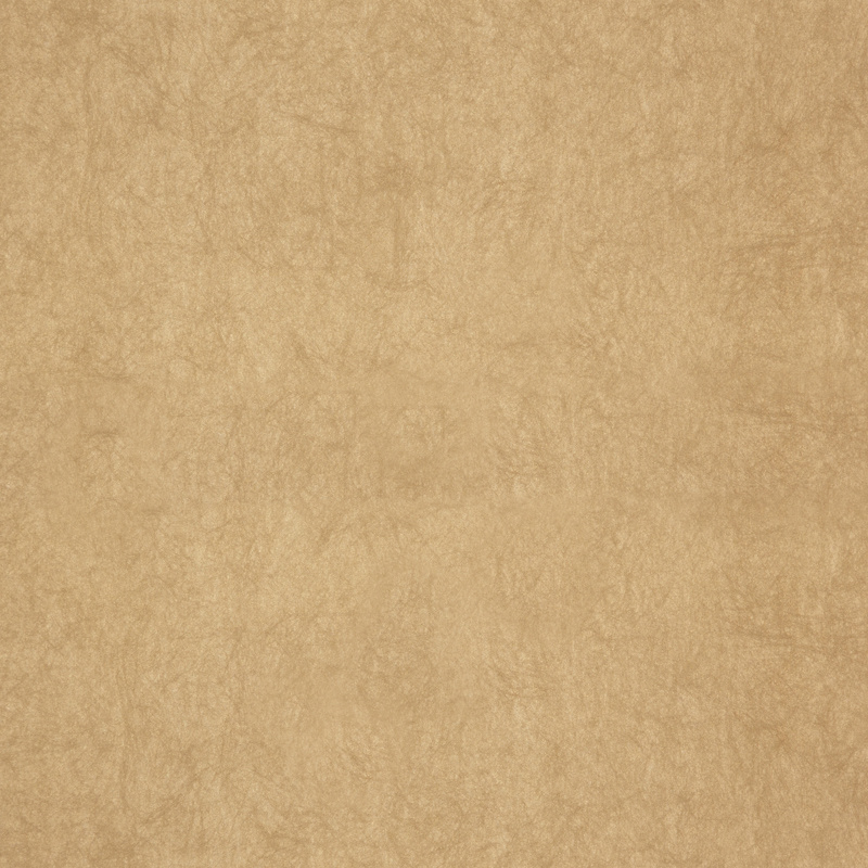 ZACHT GOUD GLITTER BEHANG - Dutch Chroma 36-Fawn