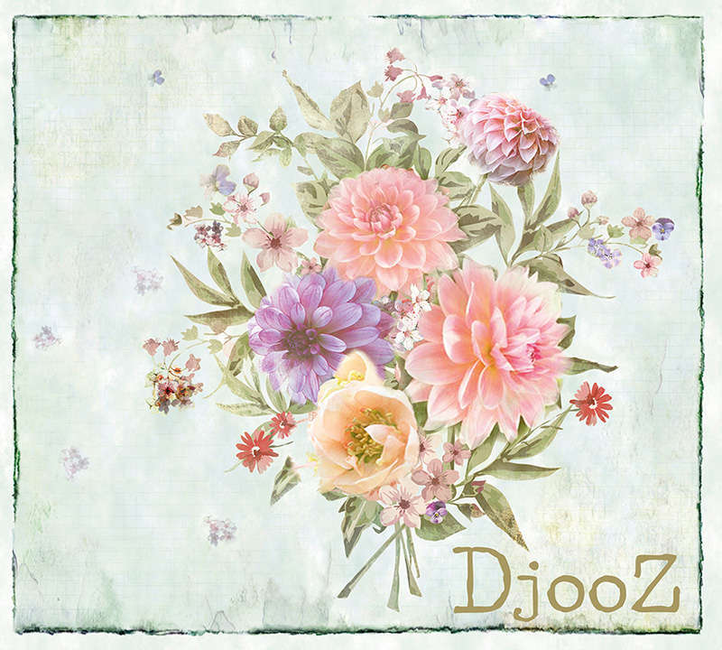 AS Creation Djooz 2​ Behangcollectie
