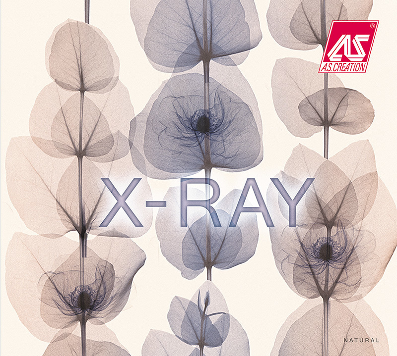 AS Creation X-Ray Behangcollectie​