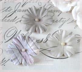 Bloem, licht beige - grijs en lila