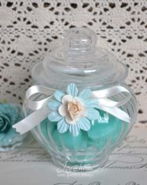 Glazen potje met mini zeephartjes in vele kleurtjes