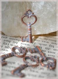 Bedeltje koper/zilverkleur, sleuteltjes