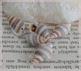 Kralen schelpjes, lichtbruin