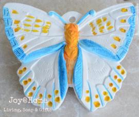 Gekleurde stenen vlinder