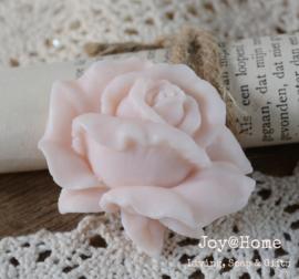 Zeepje roos, zalm
