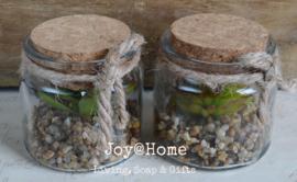 Glazen potje kurk met grind en kunstplantje