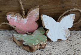 Vlinder hout, mint
