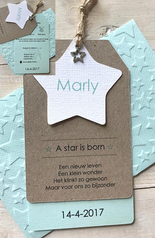 geboortekaartje,labels,touwtje,bedeltje,ster,kraft.jpg